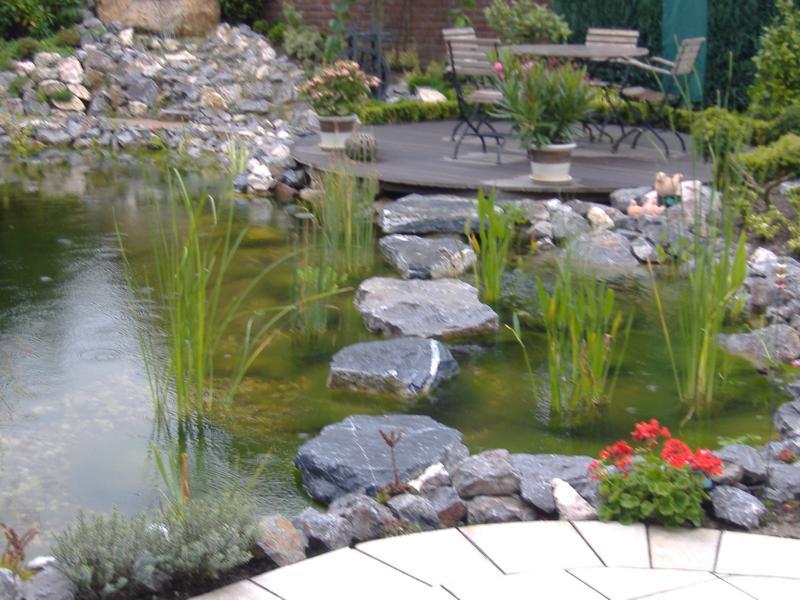 Weg aus Steinen in Teich Korte Garten- und Landschaftsbau